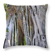 Southern Roots Throw Pillow