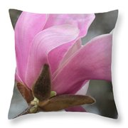 Southern Saucer Magnolia Closeup Throw Pillow