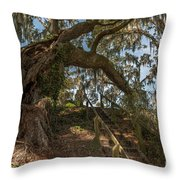 Southern Step Up Throw Pillow