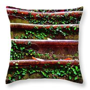 Southern Ivy Steps Throw Pillow