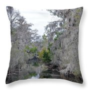 Southern Swamp Throw Pillow