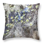 Southern Visions Throw Pillow