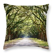 Southern Way Throw Pillow
