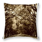 Southern Welcome In Sepia Throw Pillow