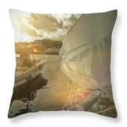 Southern Winds Throw Pillow