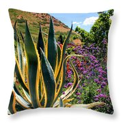Southwest Arrangement Throw Pillow
