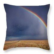 Southwest Double Rainbow Throw Pillow