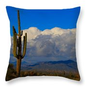 Southwest Saguaro Desert Landscape Throw Pillow