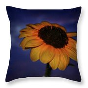Southwest Sunflower Throw Pillow