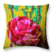 Soutime Rose Against Cracked Wall Throw Pillow