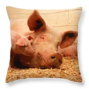 Sow And Piglets Throw Pillow