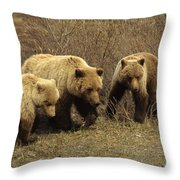 Sow Grizzly With Cubs Throw Pillow