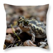 Spadefoot Throw Pillow