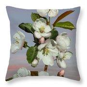 Spade's Apple Blossoms Throw Pillow