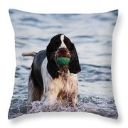 Spaniel Gundog Throw Pillow