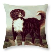 Spaniel Throw Pillow by JW Morris