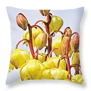 Spanish Dagger Throw Pillow