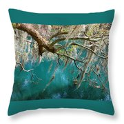 Spanish Moss And Emerald Green Water Throw Pillow