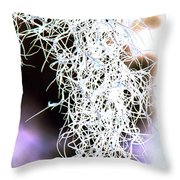 Spanish Moss Throw Pillow by Dana Patterson