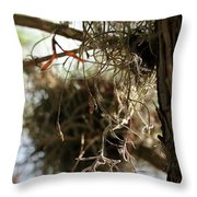 Spanish Moss I Throw Pillow