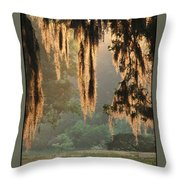 Spanish Moss In The Morning Throw Pillow