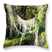 Spanish Moss Over The Swamp Throw Pillow