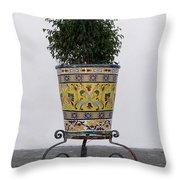 Spanish Planter Throw Pillow