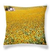 Spanish Sunflowers Throw Pillow