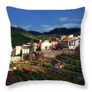 Spanish Terraces Throw Pillow