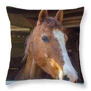 Spara 16066 Throw Pillow