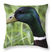 Sparkle In My Eye Throw Pillow