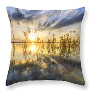 Sparkley Waters Throw Pillow