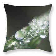 Sparkling Dew Throw Pillow