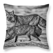 Sparkling Eyes Bw Throw Pillow
