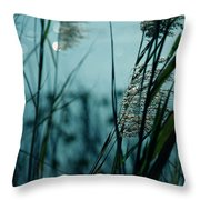 Sparkling Lights Throw Pillow