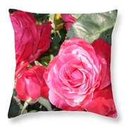 Sparkling Roses Throw Pillow