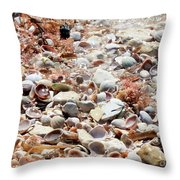 Sparkling Shells Throw Pillow