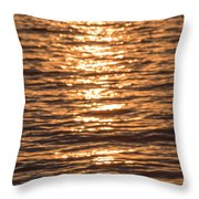 Sparkling Water Throw Pillow