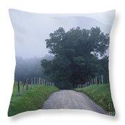 Sparks Lane - Fm000117 Throw Pillow