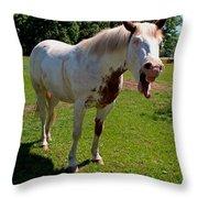 Sparky's Fun IIi Throw Pillow