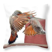 Sparring Flickers Throw Pillow
