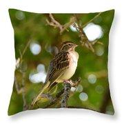 Sparrow-1 Throw Pillow