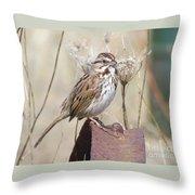 Sparrow 2 Throw Pillow