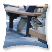 Sparrow 2 Throw Pillow