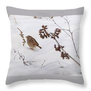 Sparrow In The Winter Snow Throw Pillow