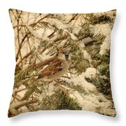 Sparrow In Winter Iv - Textured Throw Pillow