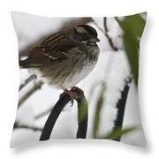 Sparrow On Fence Throw Pillow