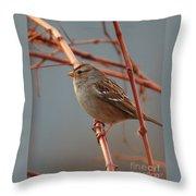 Sparrow On Grape Vine Throw Pillow