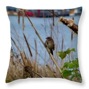 Sparrow On The Cattails Throw Pillow