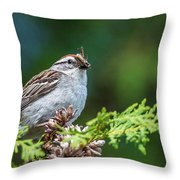 Sparrow With Lunch Throw Pillow